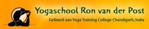 Logo Ron van der POst